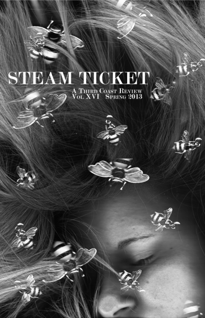 steam ticket cover